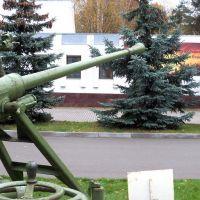 azp-22