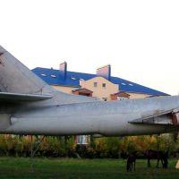 Tu-16-55