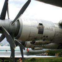 tu-142-13