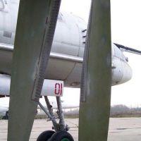 tu-95-28
