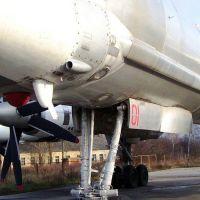 tu-95-38