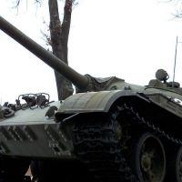 T-55-33