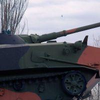 bmd-1-81