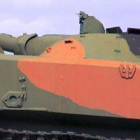 bmd-1-37