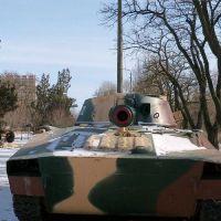 gvozdika-29