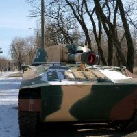 gvozdika-31