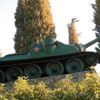 su-100-33