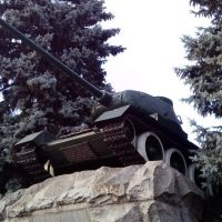 t-34-12