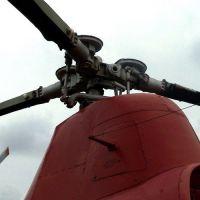 Mi-1-12